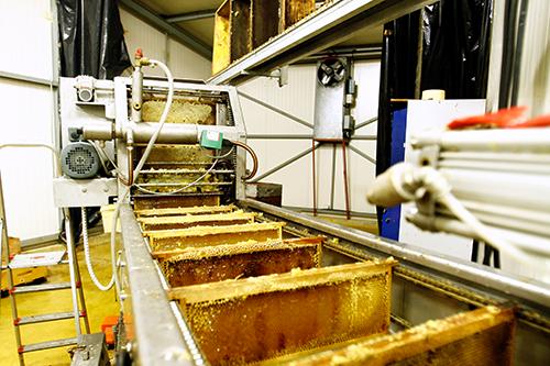 laboratoire miel