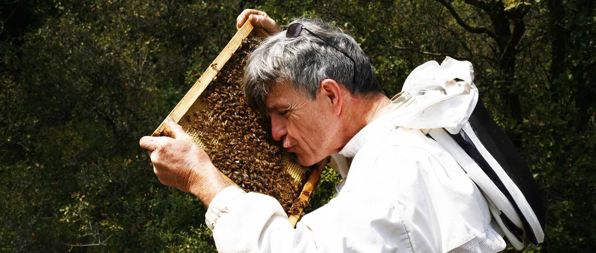 Amour des abeilles